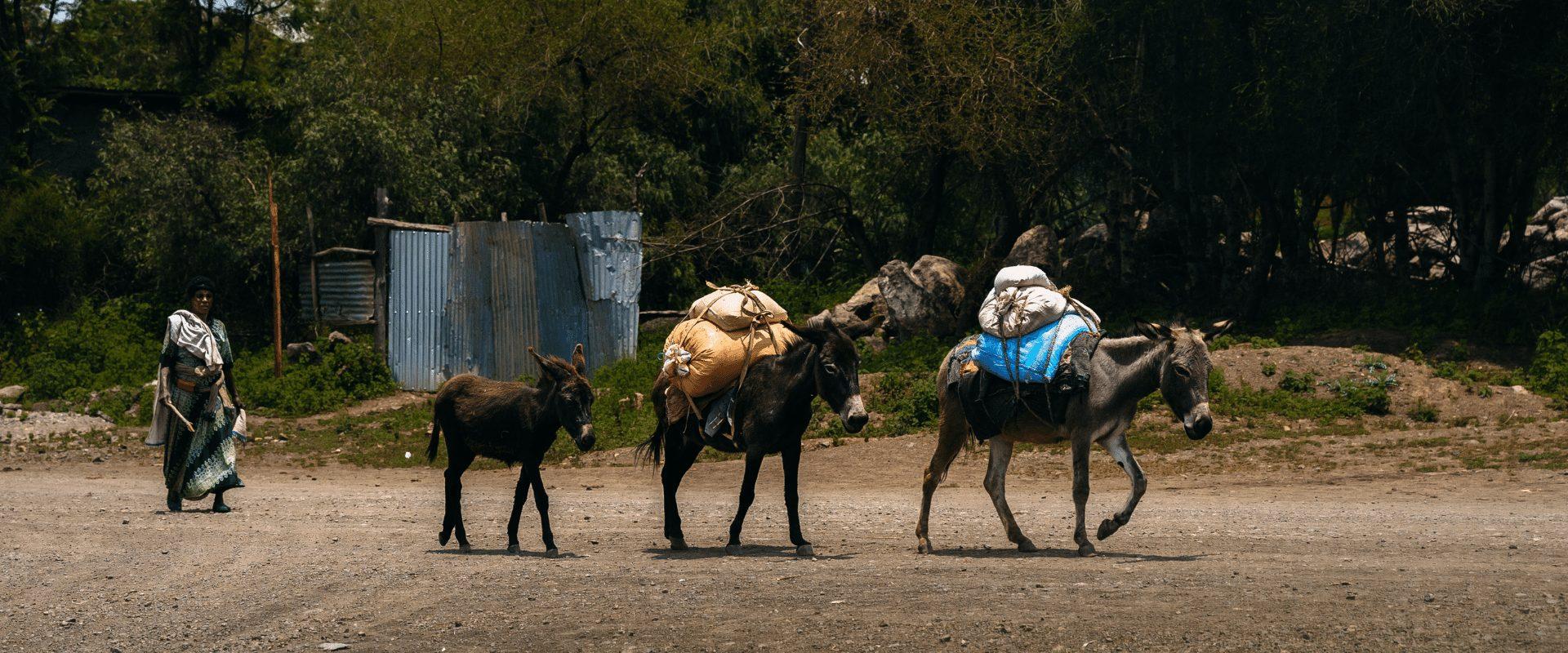 Gründe für eine Reise nach Äthiopien