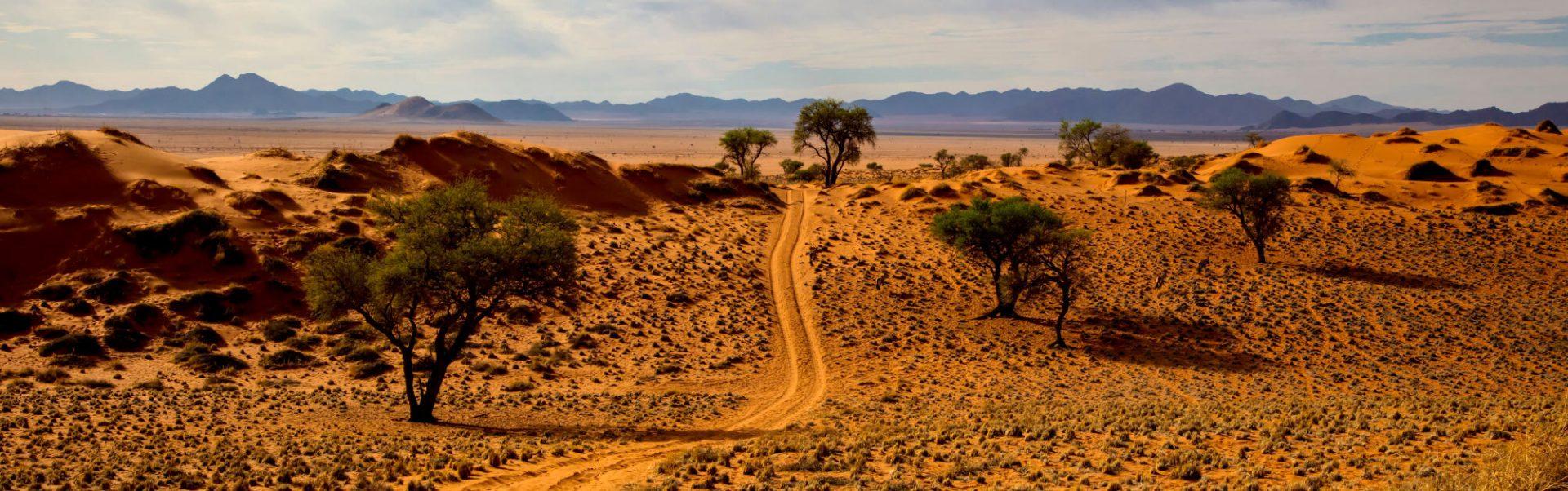 Safari-Tage bei Namibia Reise